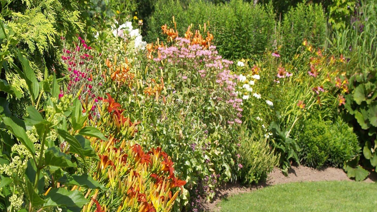 Imeilus inglise peenar puit-taimede, suvelillede ja eksootiliste taimedega: Reet Palusalu